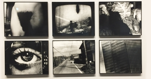 Daido-Moriyama/A diary